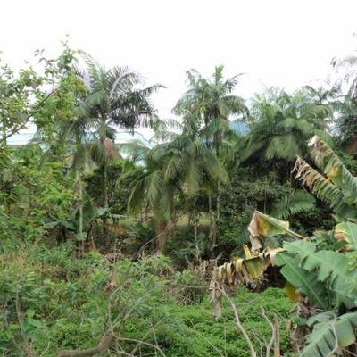 Terreno Vila Rau Jaragua do Sul