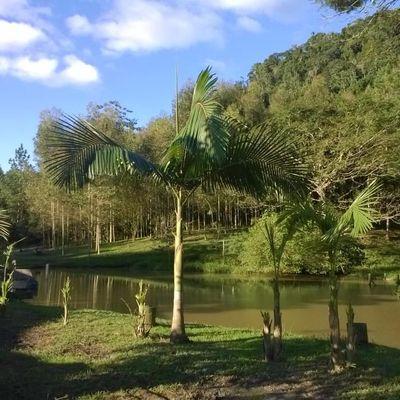 Chácara Rio Cerro II