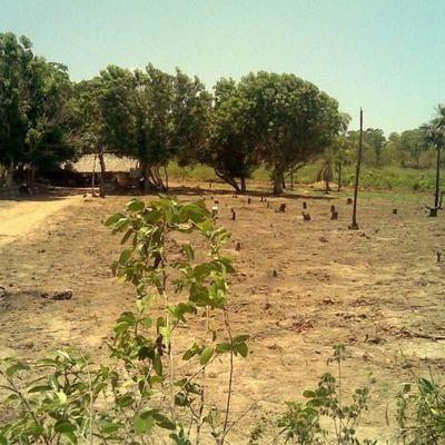 Fazenda rural, Ponte Alta do Tocantins - TO