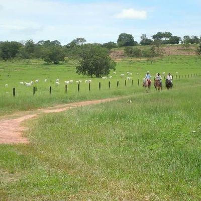 Fazenda no Mato Grosso-Coxim