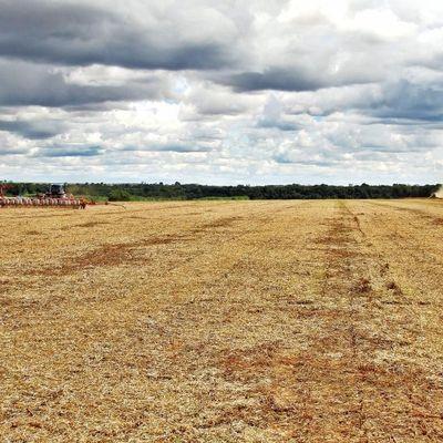 Fazenda rural, Jardim Maringá, Sinop - Mato Grosso