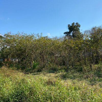 Terreno no Rainha do Mar - Itapoá/SC