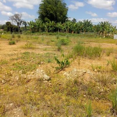 Terreno com 450m² para venda localizado no bairro Medeiros, Barra Velha - SC