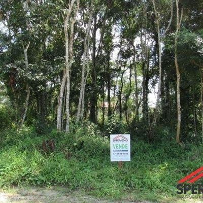 ► Lote parcelado em até 84x, c/ 192m², com autorização de corte da vegetação, Baln. Palmeiras, R$54.000,00 à vista.