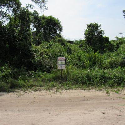 Terreno c/ 300m² ( 12,50 x 24m), face leste - Balneário Brandalize