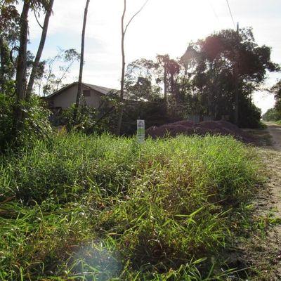 ► Lote parcelado, c/ 192m², rua aberta e com licença p/ corte da vegetação - Baln. Palmeiras