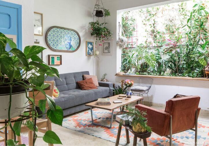 Quais as melhores plantas para interiores?