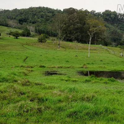 Sítio para Venda em Santo Antônio da Patrulha
