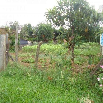 Terreno para Venda em Campo Bom, Operário