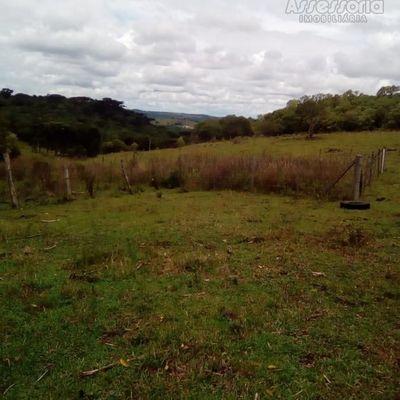 Terreno para Venda em Caxias do Sul, Criúva