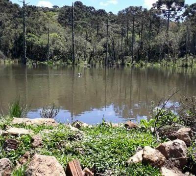 Sítio para Venda em Cambará do Sul, Fazenda Santana, 3 dormitórios, 1 suíte, 2 banheiros