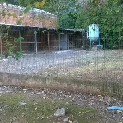 Terreno para venda bairro Shcarlau em São Leopoldo/RS