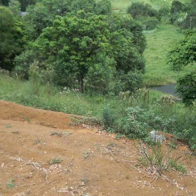 Chácara na zona rural da cidade