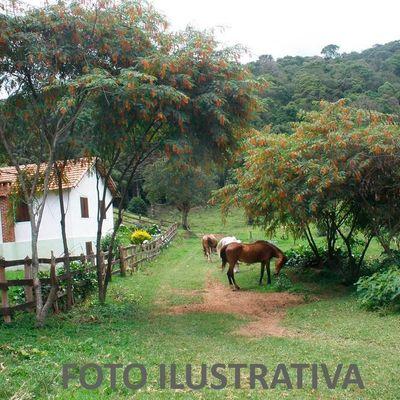 Fazenda a Venda - Fazenda com 232 Hectares as margens da BR-116 Rodovia Presidente Dutra - Rodovia Presidente Dutra, Barra Mansa - RJ