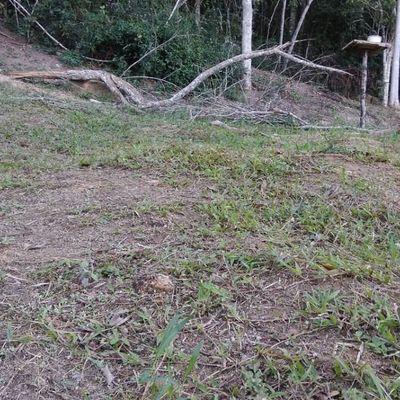 Bom Terreno em Condomínio Rio D'Ouro com lazer medindo 580 m²