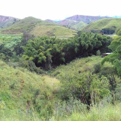 Fazenda com 10 Alqueires Mineiros, Santa Clara, Barra Mansa - RJ