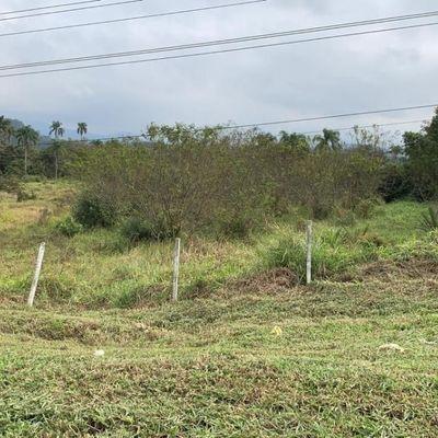 Terreno na BR 101 em Balneário Piçarras