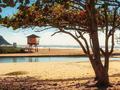 Morar na Praia Brava