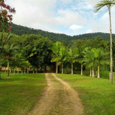 Lindo Sítio a venda a 12km do Centro de Balneário Camboriú